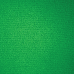 Green Screen ($100 extra)